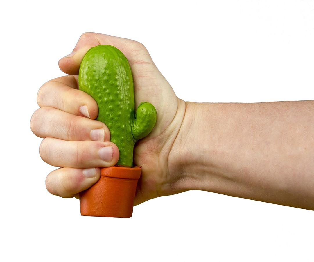Stress Cactus