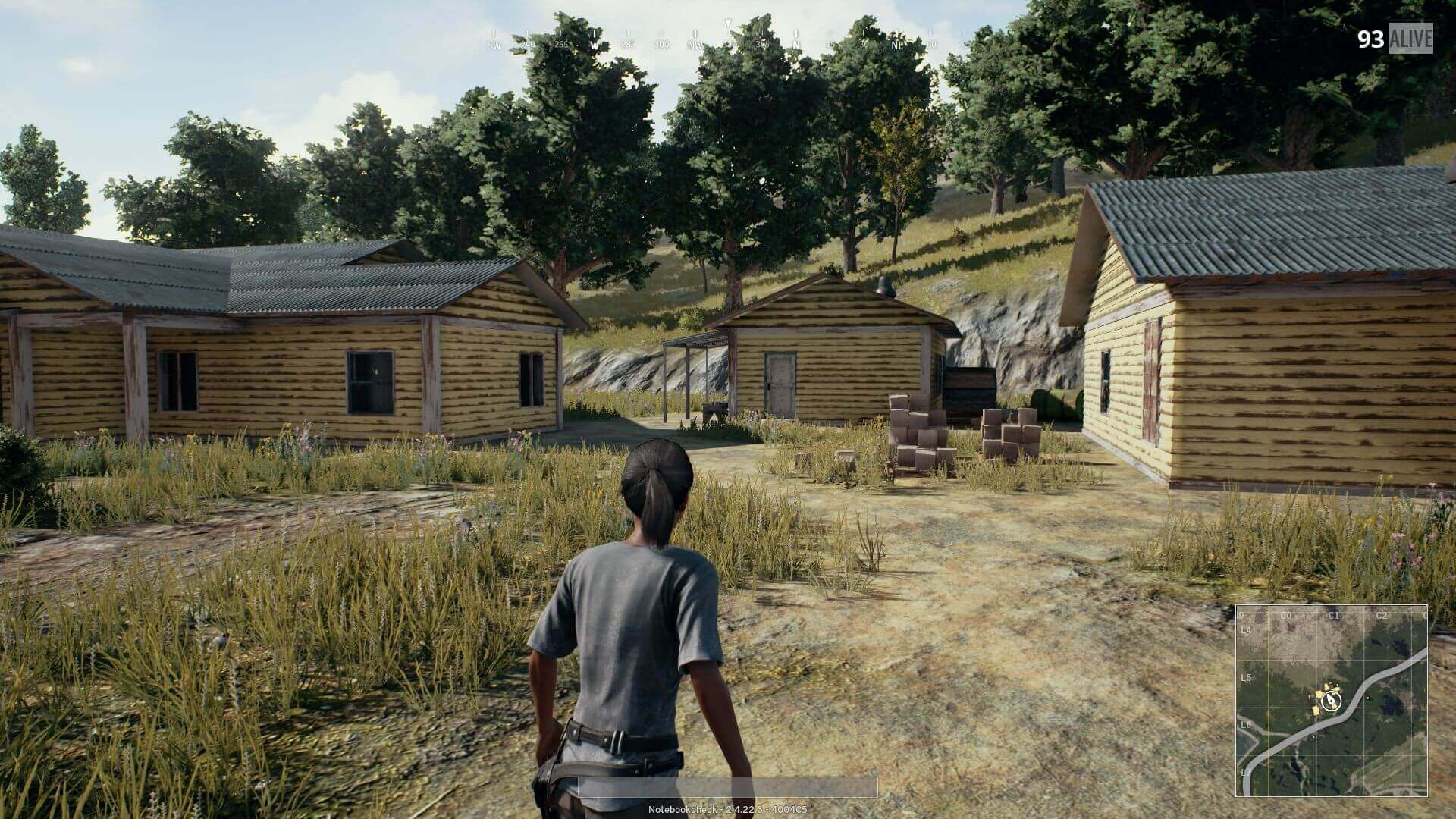 Playerunknown S Battlegrounds Game Drop In: Buy Playerunknown's Battlegrounds